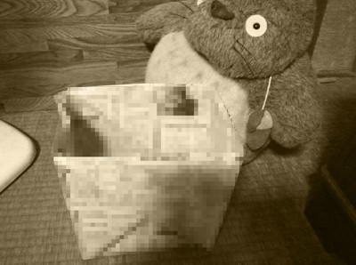 ゴミ箱の写真