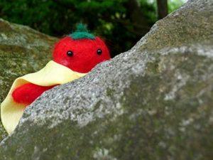 岩陰のトマトマン