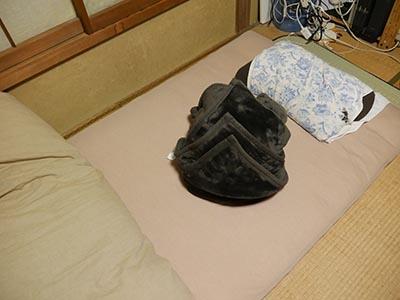 タケノコ飾り毛布