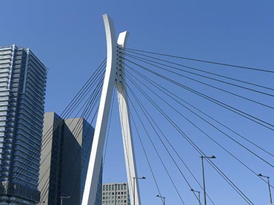 美しすぎる斜張橋。