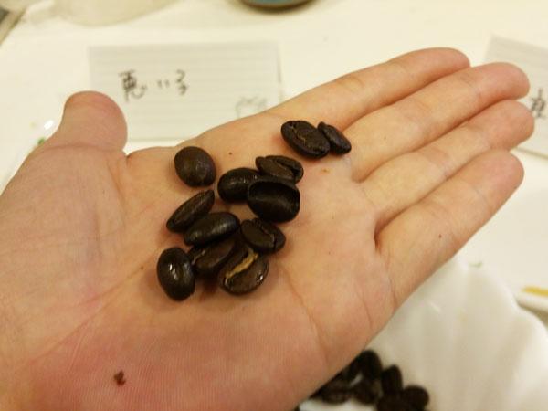 掌の上の豆