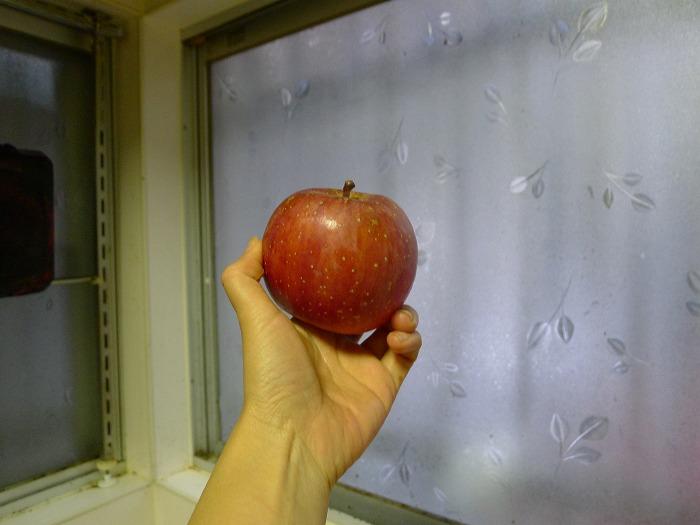 これがリンゴだ。