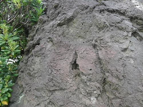 火山弾の表面