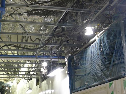 天井裏の配線むきだし