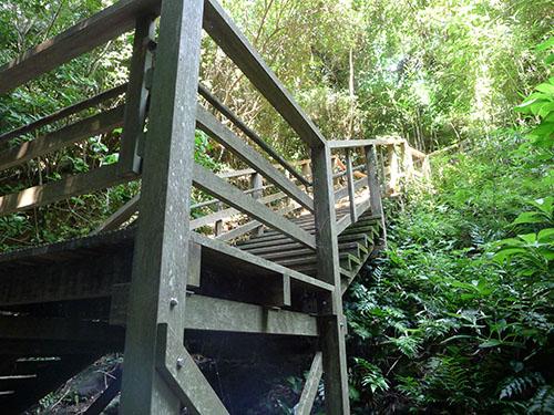 猿島遺構の階段