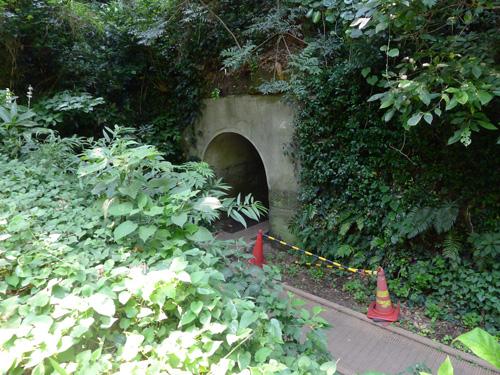 猿島 第1砲台付近のトンネル
