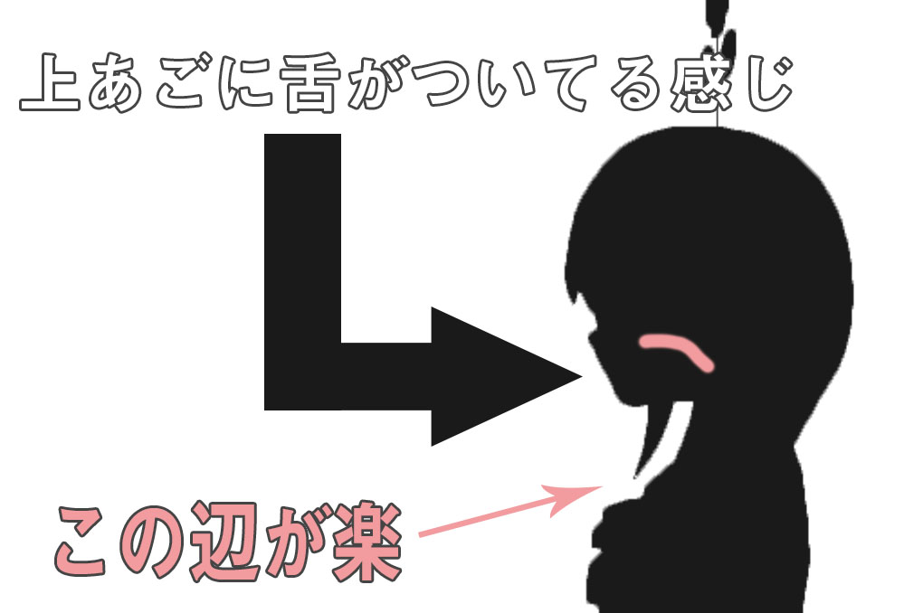 鼻呼吸のときの舌の位置